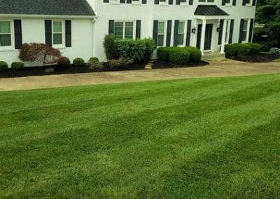 Best Lawn Mowing Service in NKY